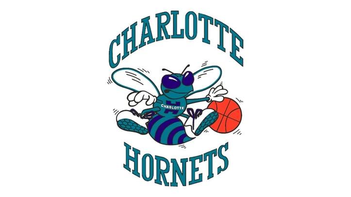 Charlotte Hornets Teal Logo
