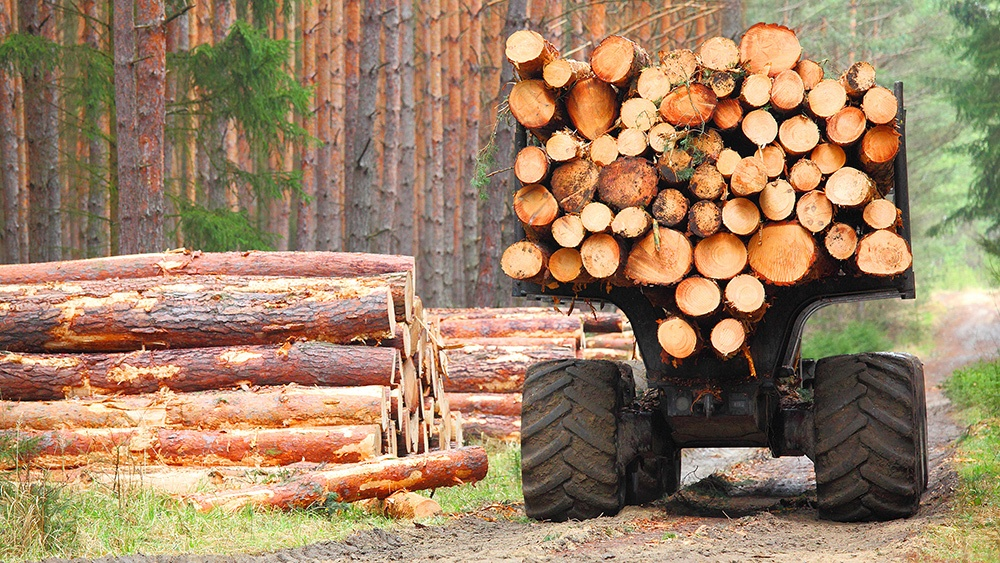 High Timber Prices Continue To Have Significant Impact On Construction Industry